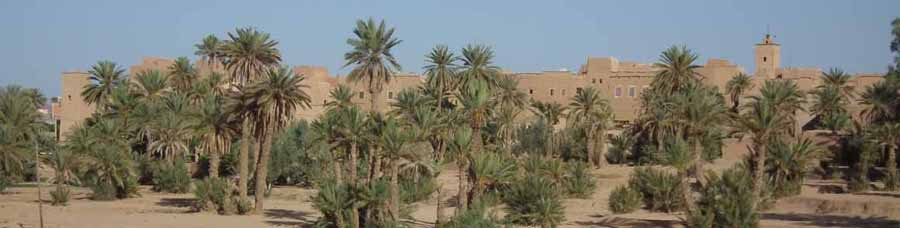 Ksar El Khorbat wall, in Todra valley, south Morocco.